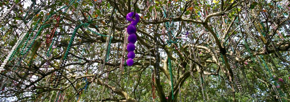 Bendy Beads